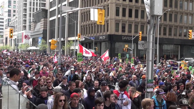 Global Marijuana March 2013