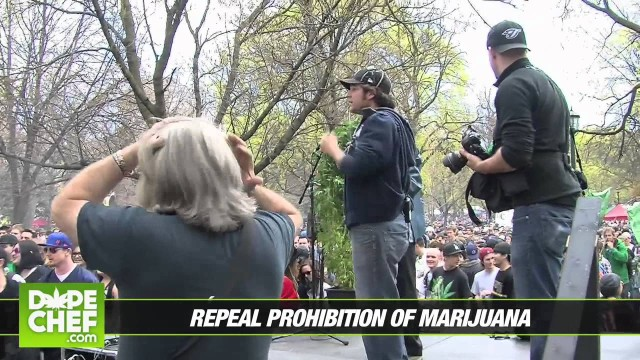 Global Marijauna March 2011