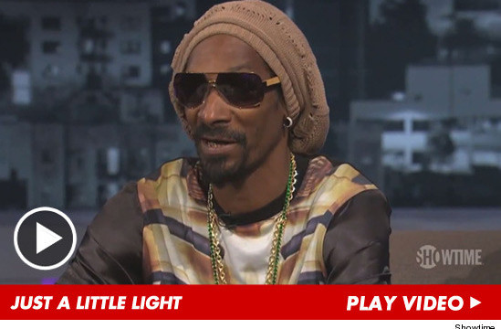 Snoop Lion's Bag of Weed Winnings Shorted