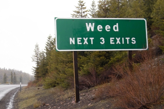 weed 3 stops