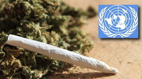 United Nations Against Legalization