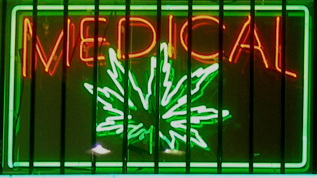 War on Medical Cannabis 2014