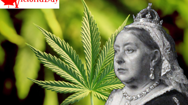 Queen Victoria prescribed cannabis extracts?