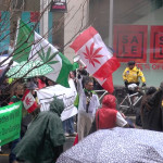 Cannabis-Champion-at-Global-Marijuana-march