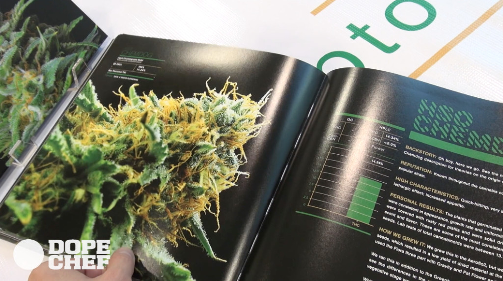 The Kitchen cannabis book chemdog