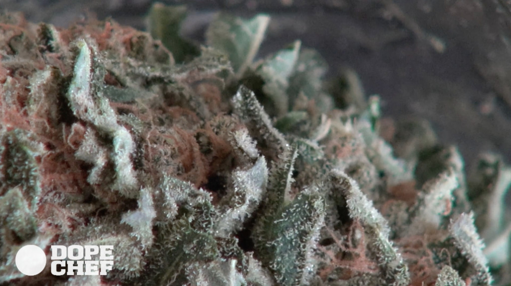 fresh weed bud in jar close up