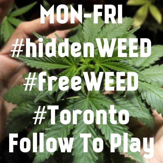 Hidden Weed monday-to-friday in Toronto