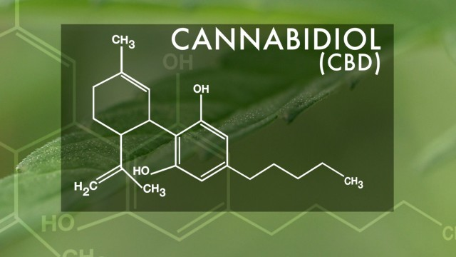 Cannabidiol Exposed
