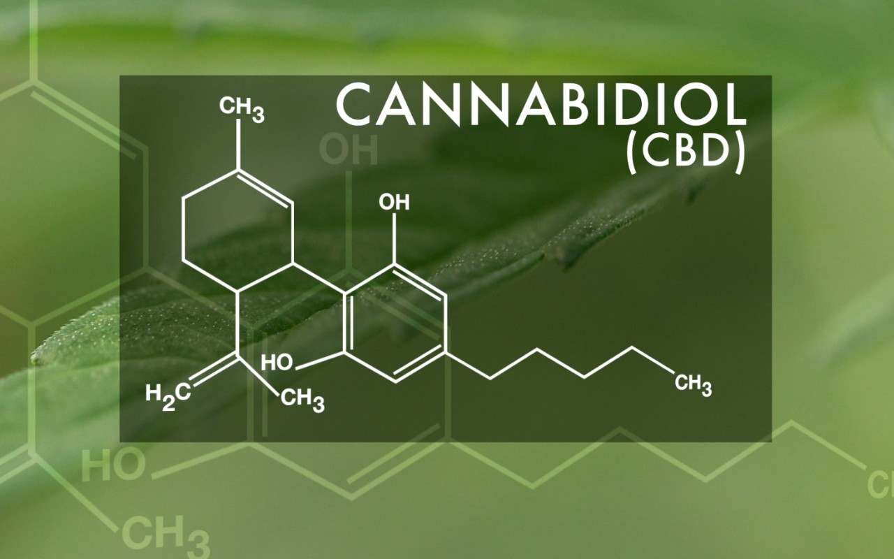Cannabidiol is a non-psychoactive cannabinoid purported to have anti-epileptic and neuroprotective properties. (TechKnow/Al Jazeera America)