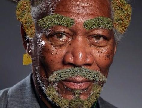 Morgan Weedman (gallery)