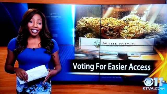 Reporter quits live-on-air for cannabis reform