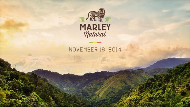 Introducing Marley Natural