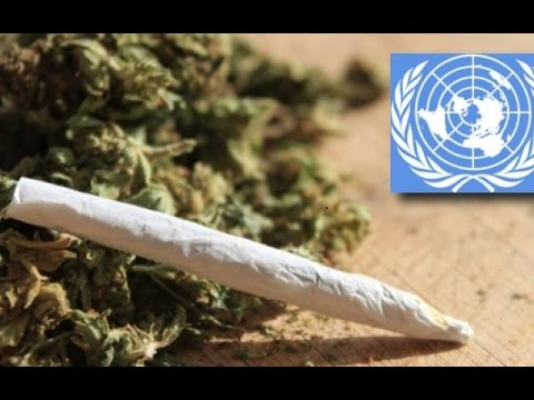 The UN's War On Weed