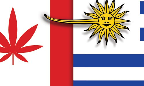 Should Canada follow Uruguay's path?