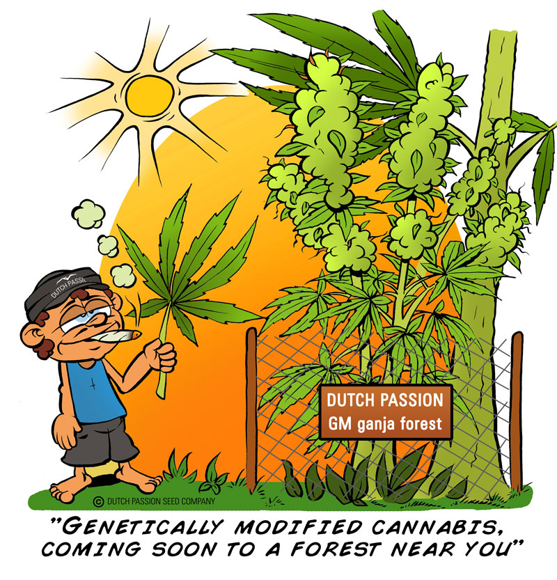 Genetic-Cannabis