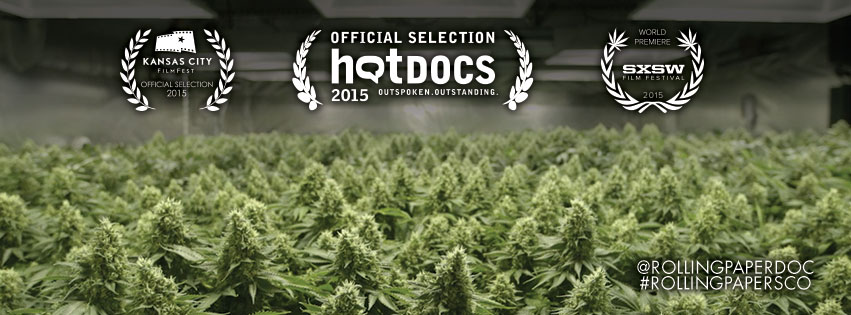 rolling papers film festivals
