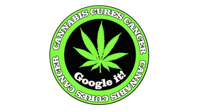 Cured with cannabis oil