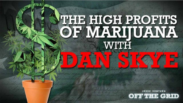 The High Profits of Marijuana