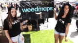 San Fran High Times Cannabis Cup