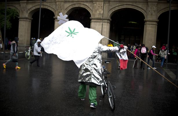 Flags out: Activists were keen to hear the outcome of the case for depenalising marijuana for recreative use