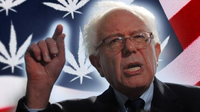 Senator Bernie Sanders to end prohibition
