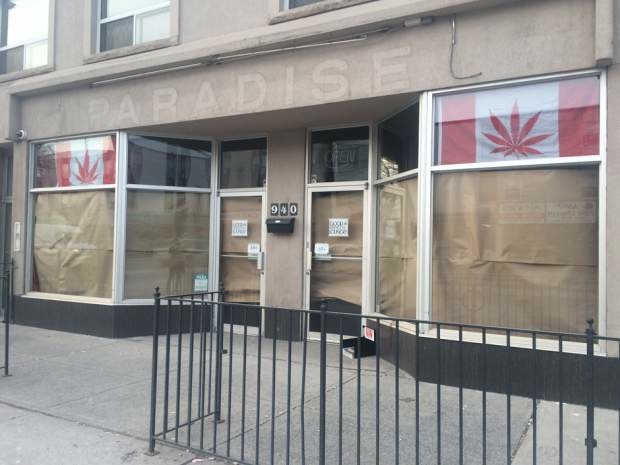 Their business, one of the first of its kind in Canada, sells marijuana, cannabis resins and extracts, which can be used in vaporizers at the cafe on the Danforth. Gillian Grace/National Post