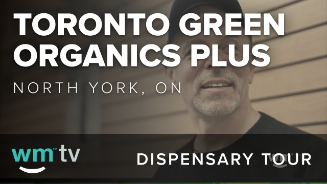 Dispensary Tour: Toronto Green Organics Plus