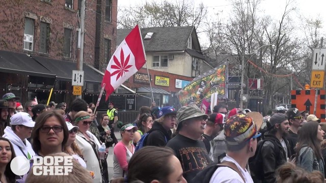 Global Marijuana March 2016