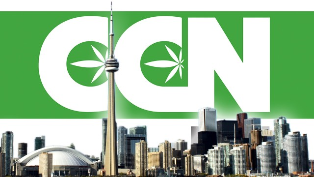 Toronto stirs the pot