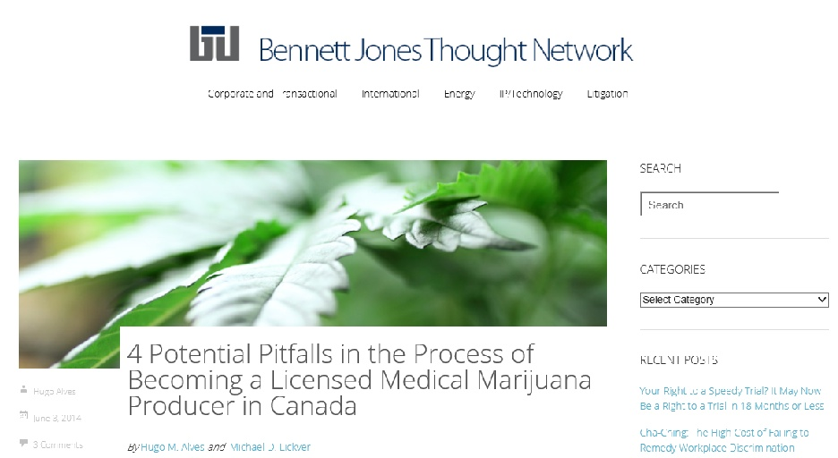 Lawyers at Anne McLellan's law firm, Bennett Jones, have positioned themselves to be the go-to legal authorities for licensed marijuana producers.