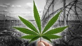 Ocean Grow Extracts buys Prison