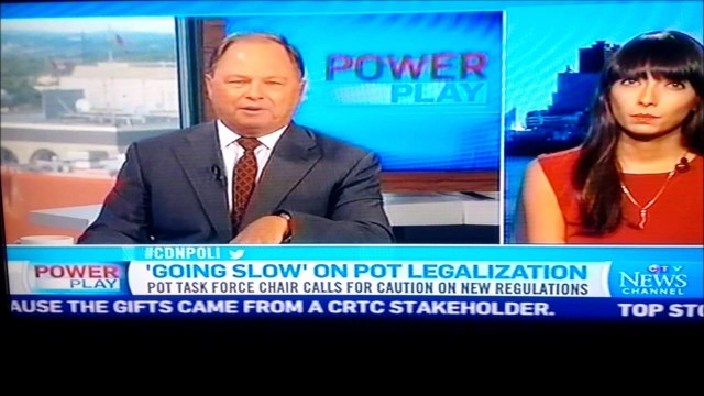 Jodie Emery on CTV Power Play