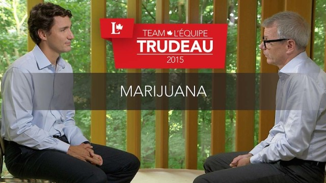 MP Adam Vaughan on dispensaries