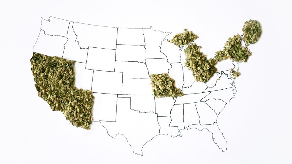 Legalization 2016 in the USA