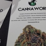 Green Market cannaworld flyers