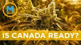 Are Canadians ready for legalized weed?