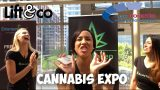 Lift and Co. Cannabis Expo in Toronto 2018
