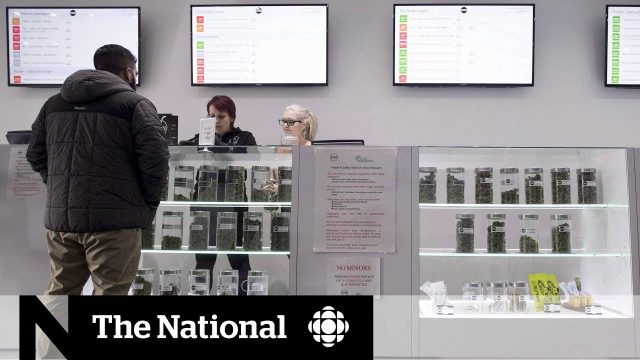 Canada should legalize dispensaries