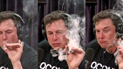 Elon Musk Smoking Weed (gallery)