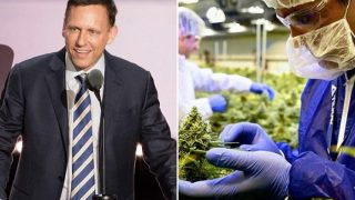 Peter Thiel wins on Tilray investment